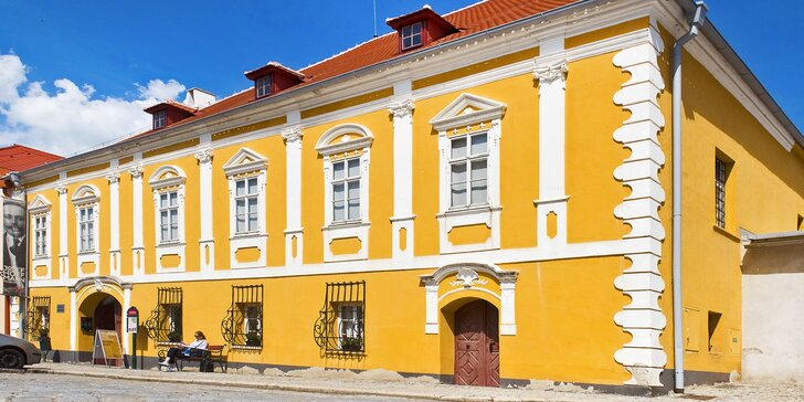 Komentovaná prohlídka rodného domu architekta Josefa Hoffmanna