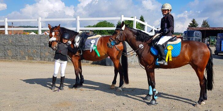 Jízda na poníkovi nebo na koni: minikurz pro začátečníky