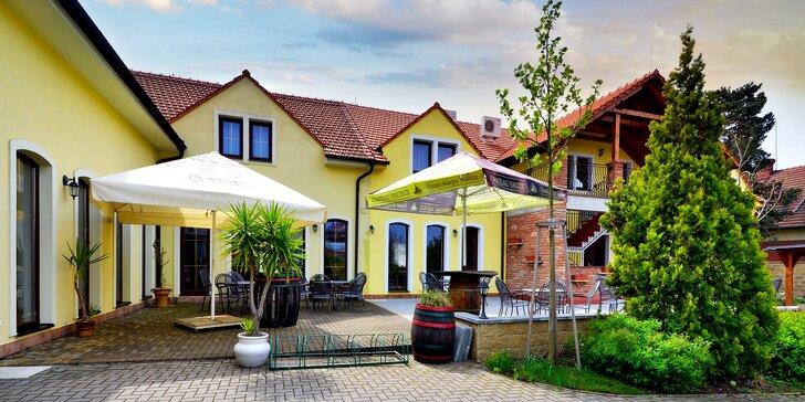 Vyrazte za dobrým vínem: penzion ve Valticích, apartmán s vířivkou, snídaně