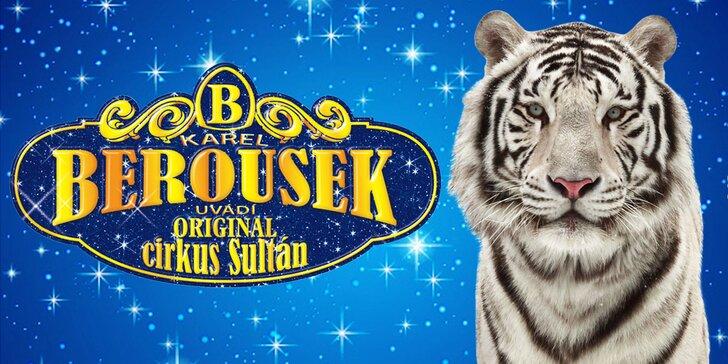 Vstupenky na originální cirkusovou show: Karel Berousek uvádí cirkus Sultán