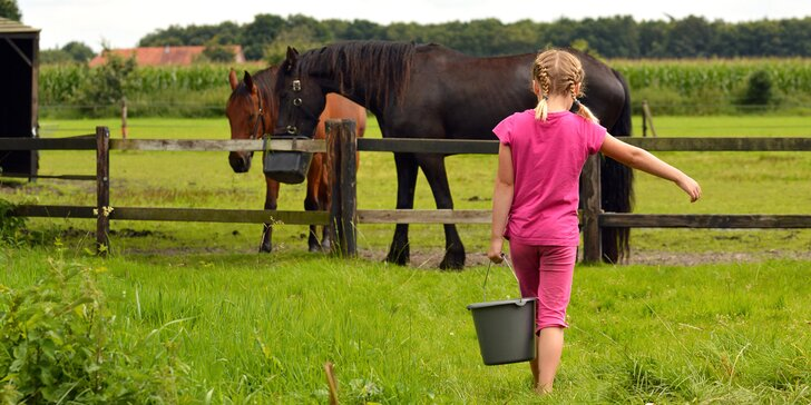 Jeden den farmářem: zážitkový pobyt na farmě pro jednoho i celou rodinu