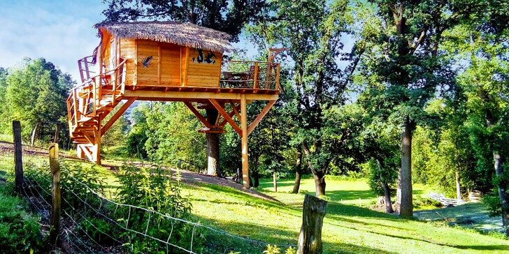 Noc v domku na stromě: úžasná romantika pro dva i nevšední zážitek pro děti