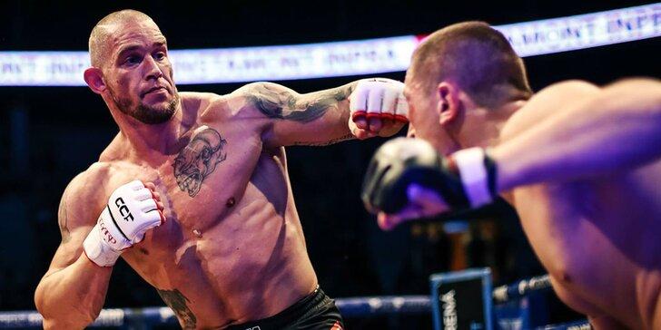 Zážitkový privátní trénink s mistrem MMA: smíšené bojové umění na míru