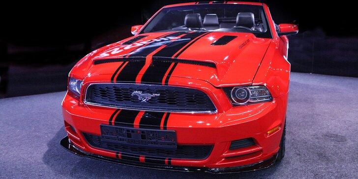 Zkroťte Mustanga: zapůjčení nadupaného kabrioletu na den nebo celý víkend