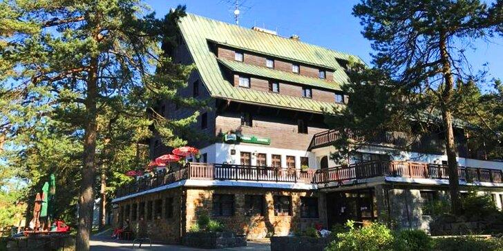 3denní pobyt kousek od rybníka: polopenze, wellness i lanový park u hotelu