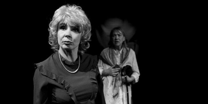 Vstupenka na představení Leni v Divadle v Řeznické