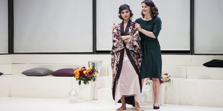 Vstupenka na divadelní představení Choroby mládí v divadle Disk