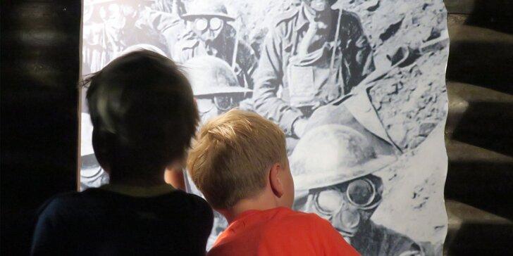 """Vstupné na rodinnou výstavu """"Tohle je válka 1914–1918"""" do Muzea Říčany"""