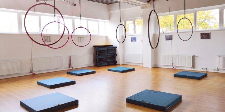 Do pohybu: Dvouhodinový workshop tance pole dance nebo aerial hoop