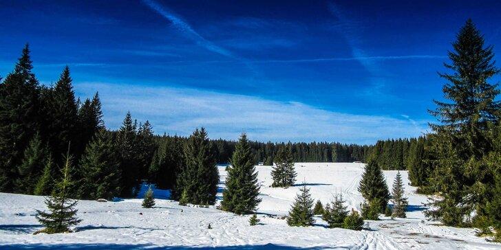 Zimní nebo jarní rodinná dovolená ve stínu Boubínského pralesa s polopenzí