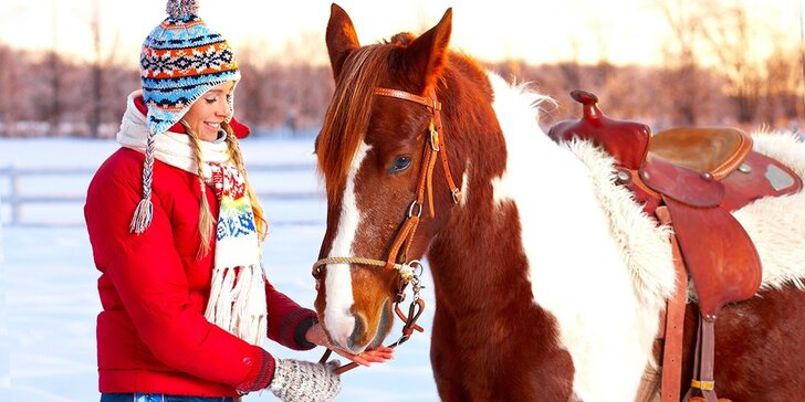 60 minut péče o koně a 30 minut jízdy v jízdárně nebo venku pro 1 i 2 osoby