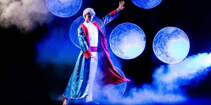 Vstupenka na představení The Little Prince Today, Life is Life nebo Deja Vu