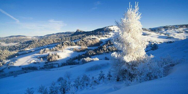 3 nebo 6 dní s polopenzí v útulném penzionu v přírodě Krušných hor