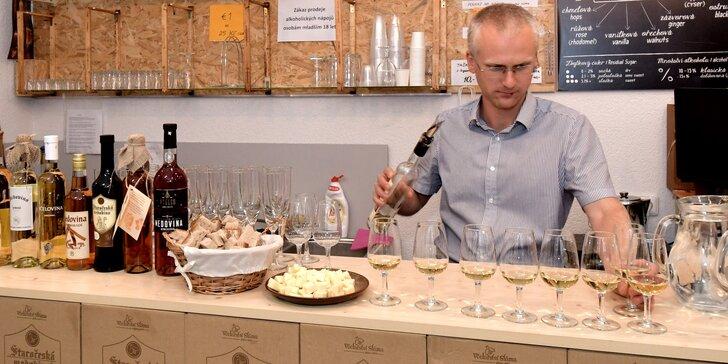 Degustace nejlepších evropských medovin: pro 1 nebo pro 2