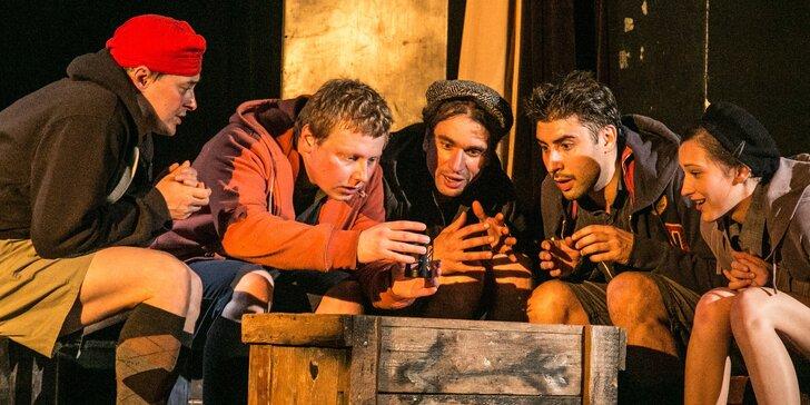 Vstupenka na divadelní představení: Stínadla se bouří