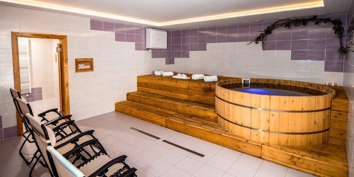 Moderní apartmány na Pálavě s wellness, degustací vína nebo obojím