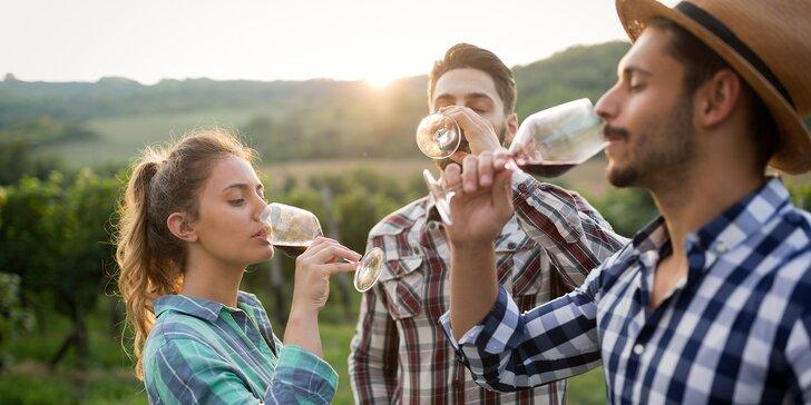 Vinařský pobyt na Slovácku pro dva: famózní víno, degustace i wellness