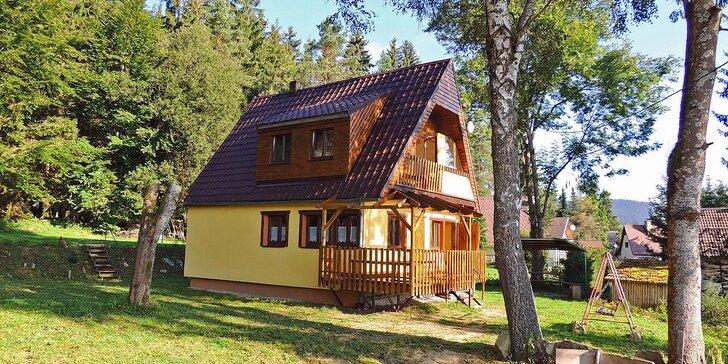 Pohodová dovolená na Lipně: ubytování v apartmánu pro 4 – 5 osob