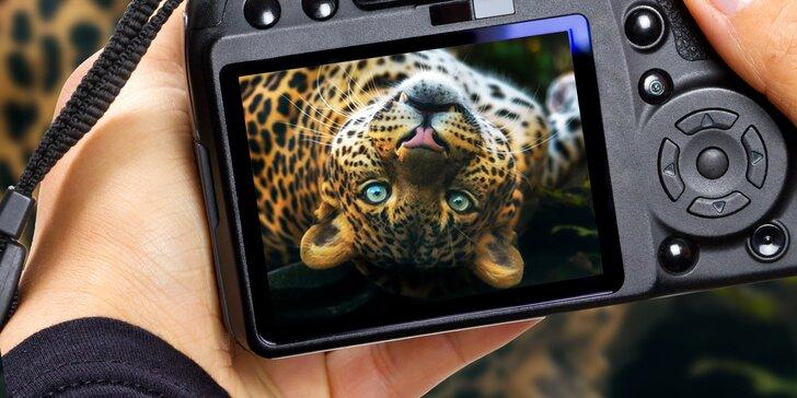 6hodinový fotografický kurz v českých zoo s profíkem Patrikem Staňkem