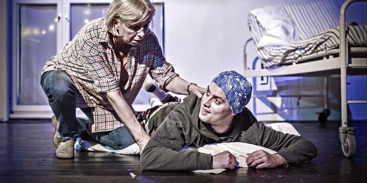 Vstup do Městského divadla Kladno na představení Oskar a růžová paní