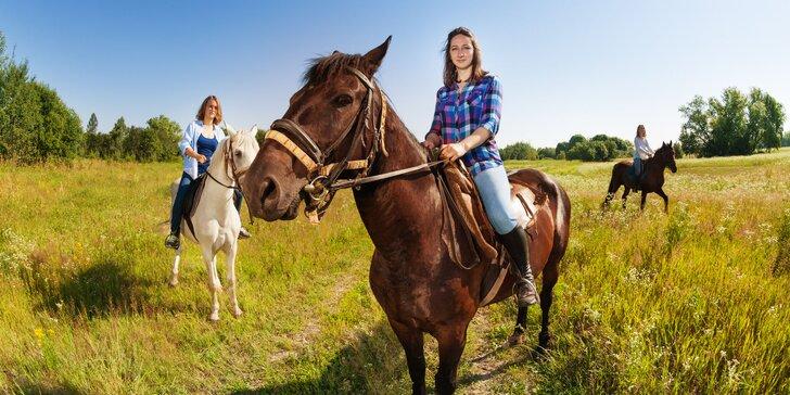 Výuková lekce jízdy na koni v přírodě či na jízdárně i focení s koníkem