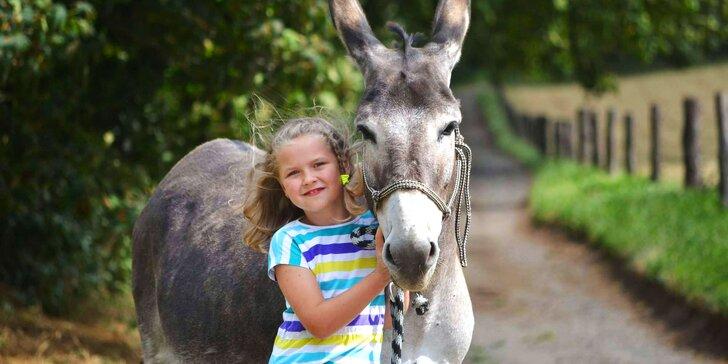 Den pro děti s bohatým programem: příroda a ekofarma se zvířátky