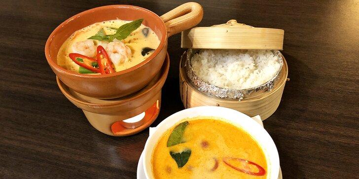 Red nebo Green curry s lilkem a kokosovým mlékem i thajskou polévkou