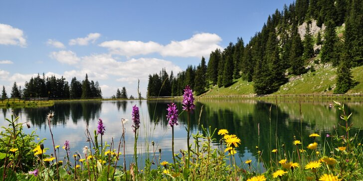 4 dny v rakouských Alpách: pobyt ve vybavených apartmánech pro 4 až 5 os.