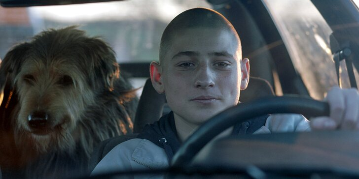 Road movie oceněná 6 Českými lvy: dvě vstupenky na film Všechno bude