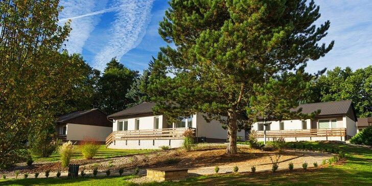 Letní dovolená v Železných horách: chatka, polopenze, bazén a wellness