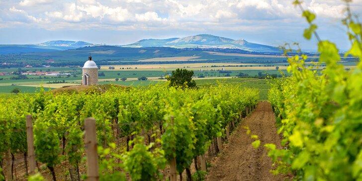 Letní pohoda na jižní Moravě: polopenze, wellness i výlety v CHKO Pálava