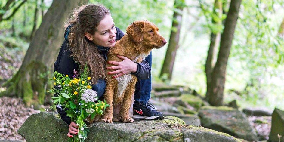 Dovolená se psem: Co mít vždy s sebou a jak psa na výletech neztrhat?