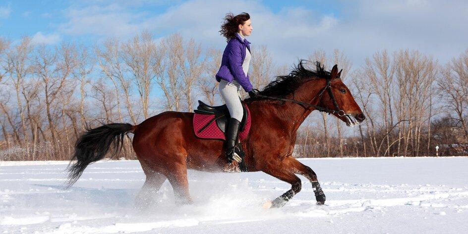 Vyjížďka na koni: novoroční nebo v průběhu zimy