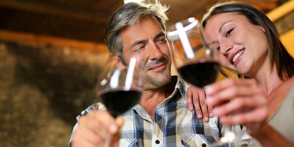 Pobyt ve Valticích: strava i košt vín na zámku