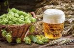 Třikrát chmelené nefiltrované pivo Auersperg, 5 l