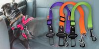 Nylonové postroje a bezpečnostní pásy pro psy