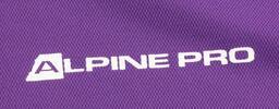 Pánské triko Alpine Pro F