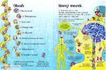 Encyklopedie s okénky: Co máš v hlavě?