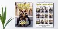 Praha psíma očima: charitativní kalendář i magnety