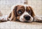 Fotopuzzle A4 - 48 dílků