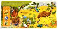 První objevy - Krásní ptáci