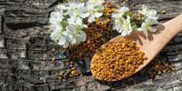 Zázrak přírody pro zdraví: včelí pyl ze Slovenska