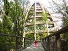 Celodenní výlet do Národního parku Bavorský les