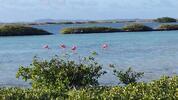 Vánoce v Karibiku: 12denní zájezd plný zážitků