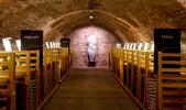 Dovolená na Pálavě s návštěvou galerie vín