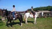 Zážitek s koňmi na Staroboleslavském dvoře