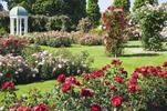 Zámek Laxenburg a Slavnost růží v Badenu