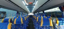Drážďany autobusem: nákup v Primarku, jarní trhy