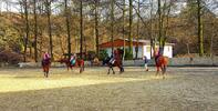 Sobotní jízda: Osedlejte koně či dítěti poníka