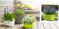 Barevné květináče a truhlíky Emsa